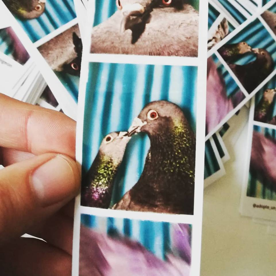 CARTE MEMBRE + PHOTO + STIKERS
