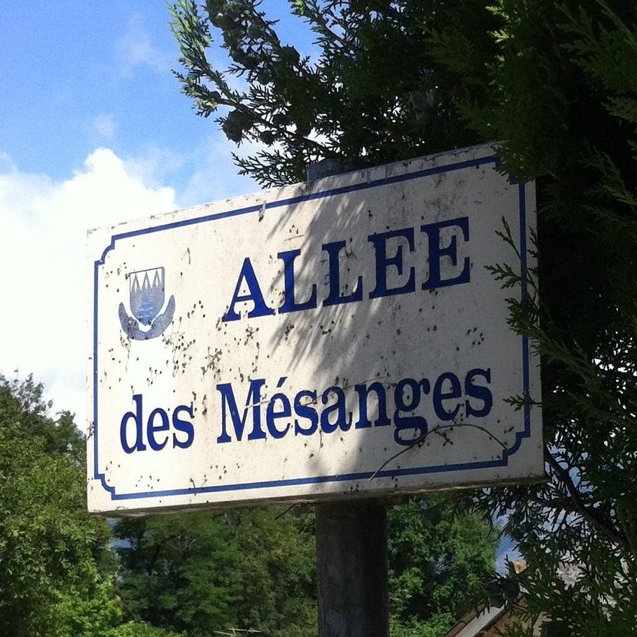 Allee_des_mesanges